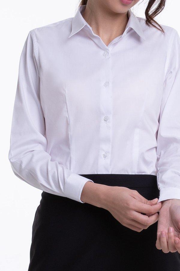 Ladies Classic Long Sleeve Blouse (FHA-18117)