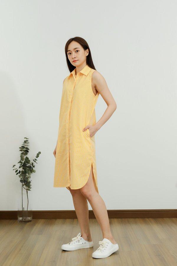 Emma Stripe Shirt Dress